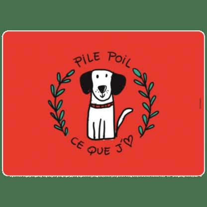 hondendeken pile poil